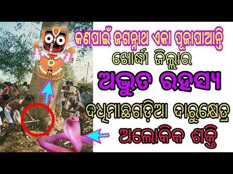 Puri Jagannath || Odisha History || Dadhimacha Gadia, Blog #1, Darubramha ,Ajit Entetrtainment