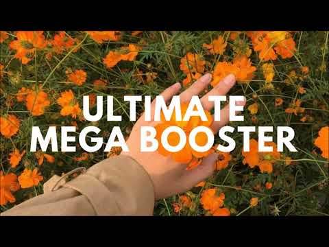 Mega Ultimate Booster