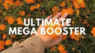Mega Ultimate Booster