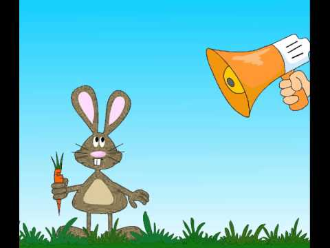 Flash Animation Funny Birthday Bunny