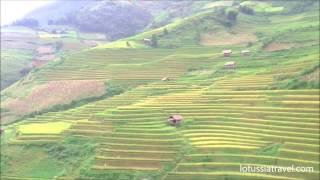 Vietnam Mu Cang Chai Terraced Rice Fields