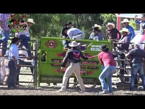 ¡¡¡ 3 Ganaderías  18 Toros!!! Los Elegidos,Los Fulminantes y Rancho El Morral,En Firebaugh Ca,2016.