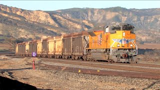 HD: Yuma, San Bernardino, and Alhambra Subdivision Railfanning in January 2015