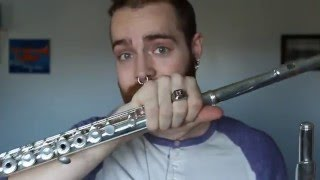 Flute Talk: New Flute, Old Flutes, and Advice on Choosing a Flute [8BitBrigadier]