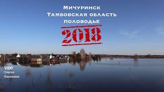 Мичуринск Тамбовская область половодье 2018