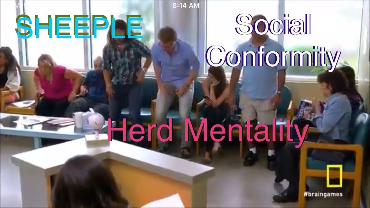 Famous Social Conformity Experiment Perfectly Explains Covidiocracy