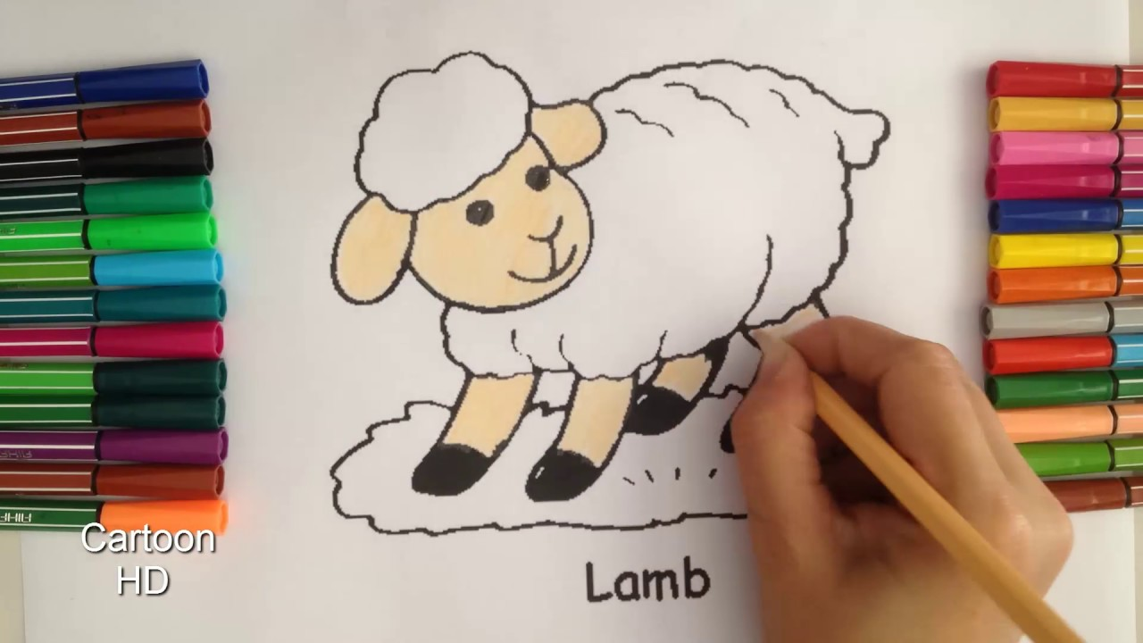 sheep coloring pages for kids sheep coloring pages cartoon hd