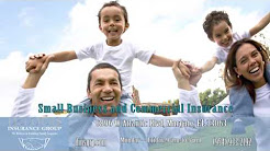 Delouis Insurance Group