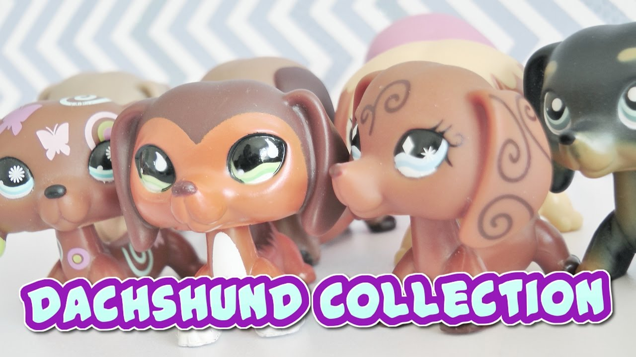 All My Lps Dachshunds Lps Dachshund Collection Youtube