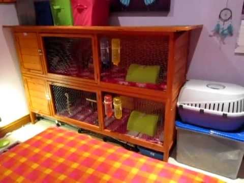 Guinea Pig Hutch - Cage Tours + Organization & New Igloos!
