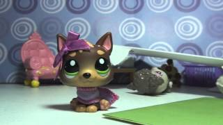 "Littlest Pet Shop: Kandy TV Episode #4 ""You"