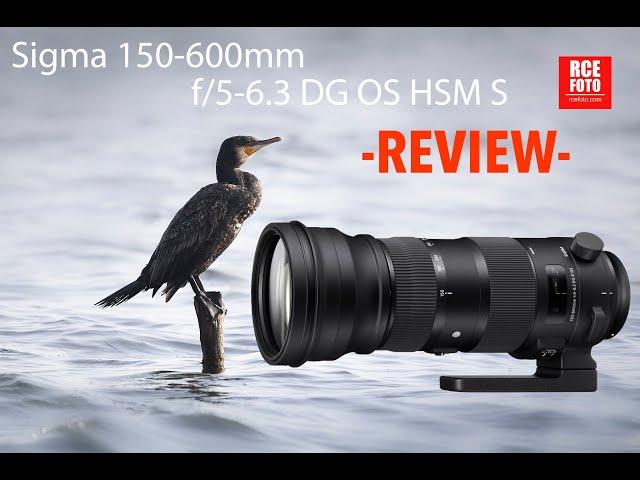 Sigma 150 600mm f 5 6 3 DG OS HSM S