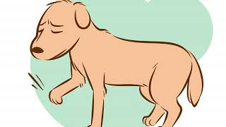 How to Recognize a Dying Dog