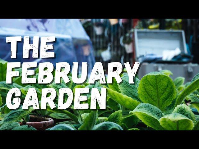 February Garden Update