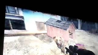 Fallout 4 my dog farm :)
