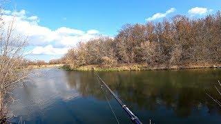 Ловля Щуки На Красивой Осенней Реке. Рыбалка на спиннинг.