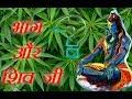भांग और भगवान शिव के बीच जानिए क्या है संबंध   Relation between Lord Shiva and Bhang   Kaal Chakra