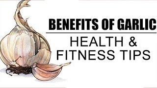 Health Benefits Of Garlic | Health And Fitness Tips