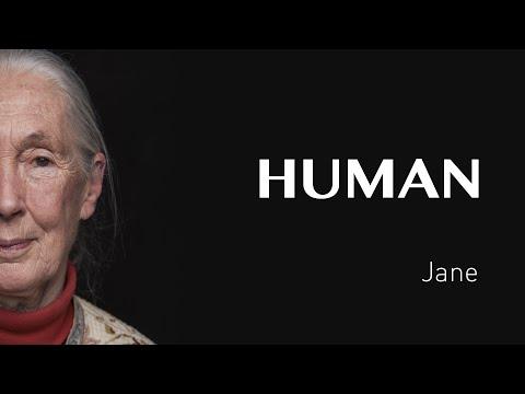 מסר לאנשים, מסר לאנושות
