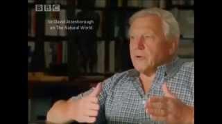 Rationalism Breeds Atheism