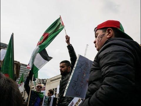 الرئيس الجزائري المؤقت يدعو لمشاورات  - نشر قبل 2 ساعة