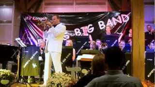 A man and his trumpet - Muppets Big Band