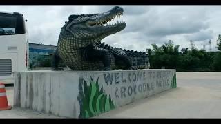 Смертельное #ШОУ с крокодилами. #CrocodileSHOW. Крокодиловая ферма. (Тайланд, о  Пхукет)