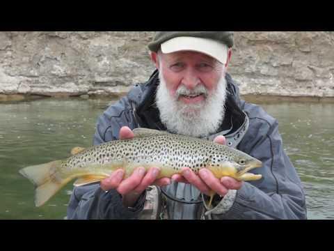 Mid April Fly Fishing - Big Utah Brown Trout
