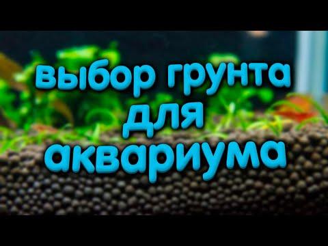 Какой выбрать грунт для аквариума с растениями. Минусы питательных грунтов, сойлы.