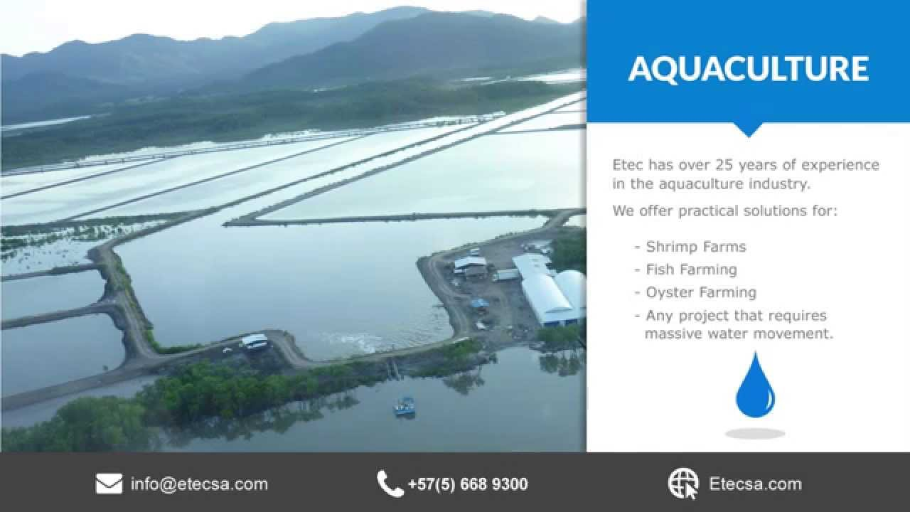 Aquaculture Water Pumps, Shrimp Farms Pumps