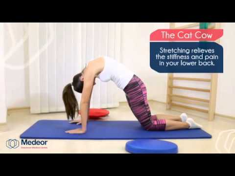 the catcow stretching exercise  youtube