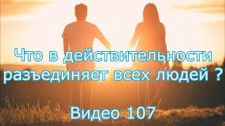 Что в действительности разобщает всех людей, на внутреннем душевном, духовном уровне ?  Видео 107