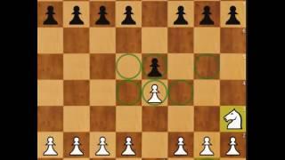 Baixar Como jogar xadrez (regras,movimentos,dicas) Vídeo aula para iniciantes