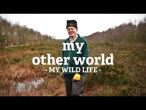 My Other World - Philip, Astley Moss, Manchester