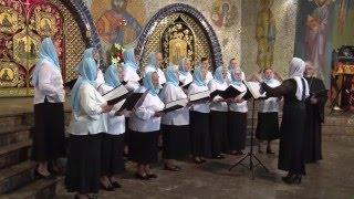 Hajnowskie Dni Muzyki Cerkiewnej'2016 - Chór Parafii Prawosławnej w Szczytach