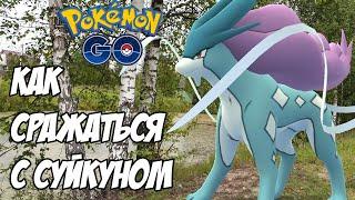 [Pokemon GO] Подготовка к Суйкуну. Играть в деревне стало легче?