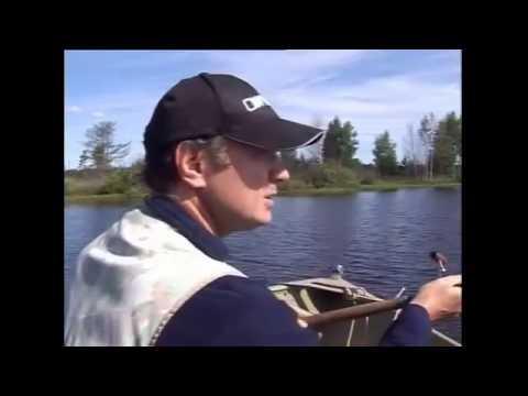 Ловля леща на червя и опарыша - YouTube
