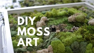 DIY MOSS ART | DONE SIMPLY