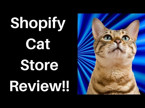How To Sell Cat Products On Shopify (Store Review)