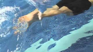 Front crawl Swimming technique - legs