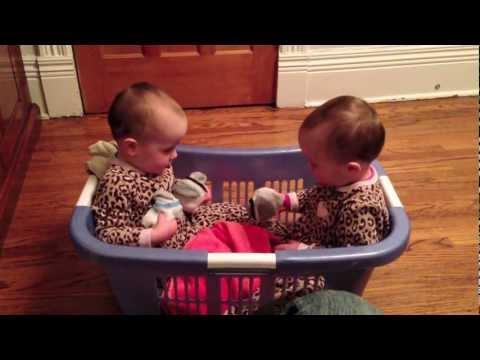 Twin Babies Talking in a Laundry Basket