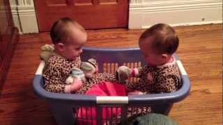 Twin Babies Talking In A Laundry Basket