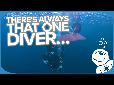 There's Always That One Diver...