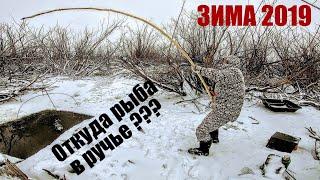 Ведро рыбы за 1 подъем ЁКЛМН ! Как наловить много рыбы? Рыбалка на паук зимой Рыбалка 2020 Рыбалка
