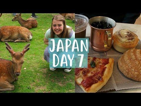 Japan Vlog | Day 7 | Visitng lots of deer at Nara Park!