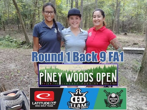 Dynamic Discs And The Rose City Disc Club Present The Piney Woods Open, FA1 (Rd 1 Back 9)