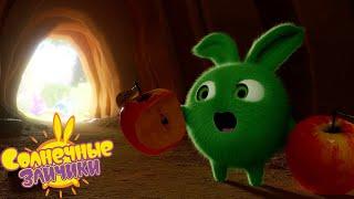 Кто живет в пещере Солнечные зайчики Сборник мультфильмов для детей