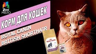 видео Консервы для кошек холистик и их особенности