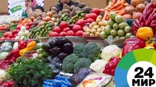 Безопасные фрукты и овощи: как выбрать «чистый» продукт - МИР 24