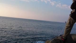 石鯛釣り#2内之浦 thumbnail